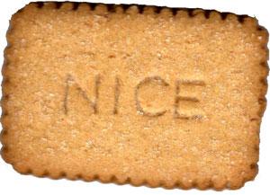 nice-biscuit-main1